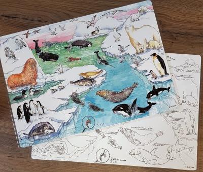 Bordsunderlägg Polardjur