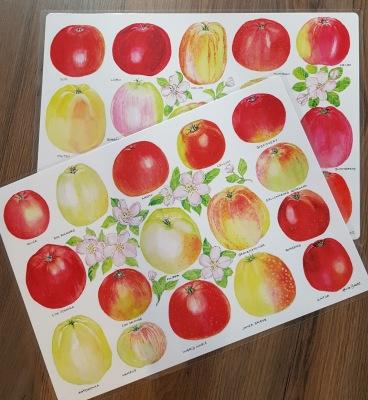 Bordsunderlägg  Svenska äpplen