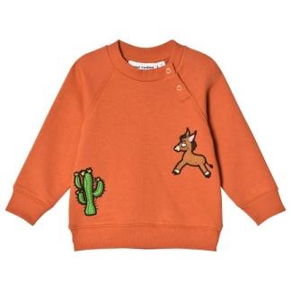 Donkey cactus tröja - St 80/86