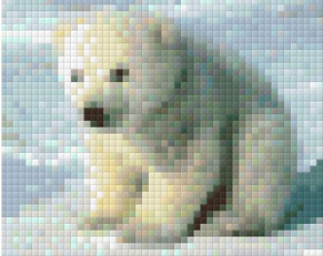 Isbjörn - Isbjörn