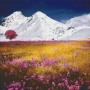 Alperna - Alperna - 30 rbp