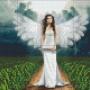 Ängel - Ängel 6 rbp