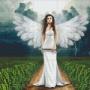 Ängel - Ängel 21 rbp