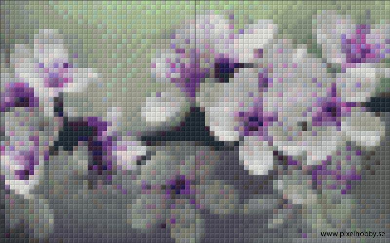 Blomster 2 rbp.phd