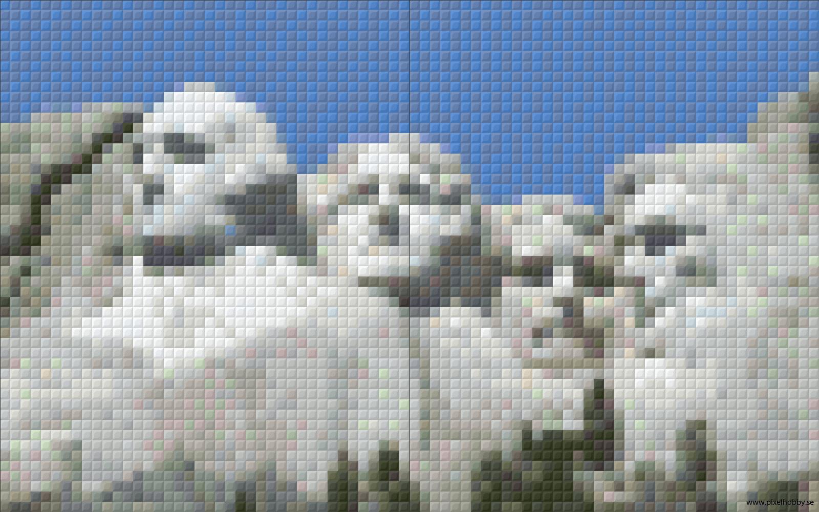 Mount Rushmore 2rbp