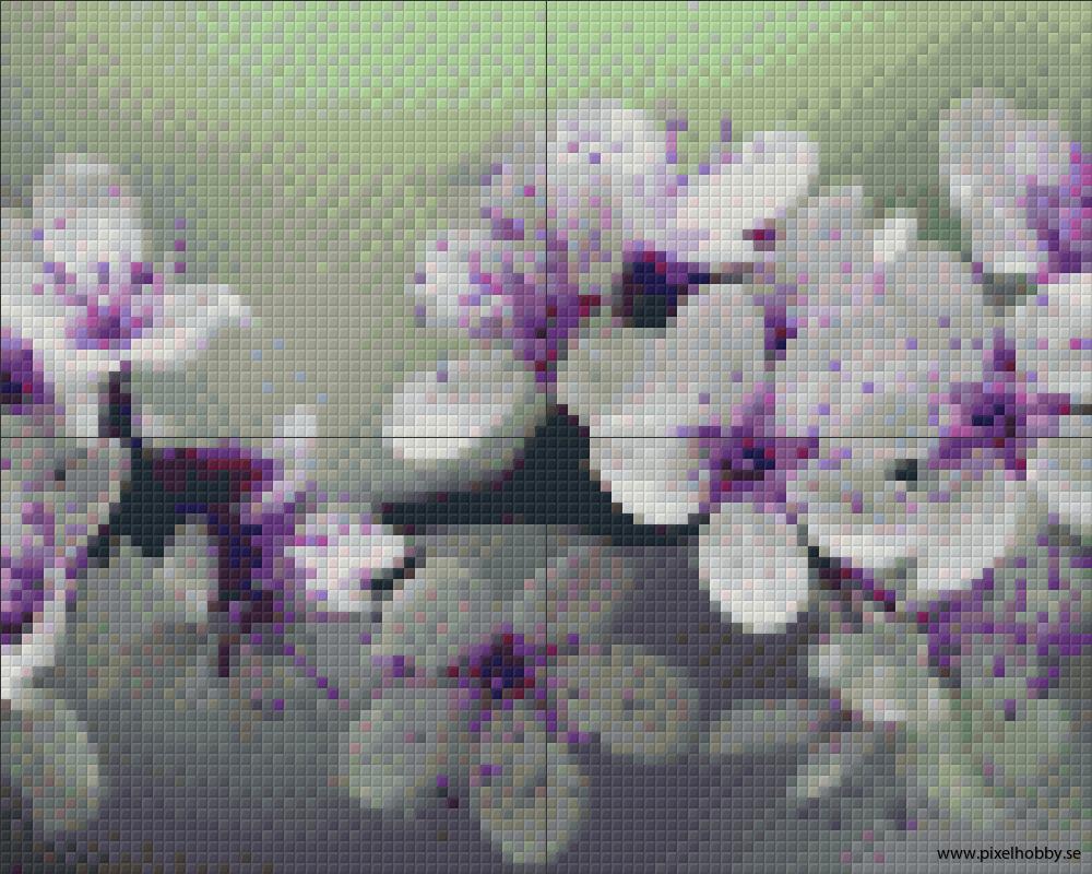 Blomster 4 rbp