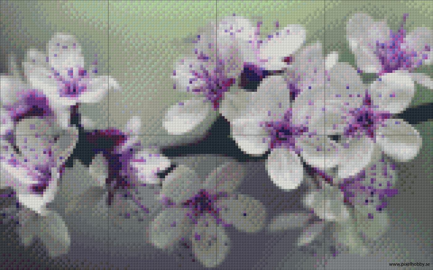 Blomster 8 rbp