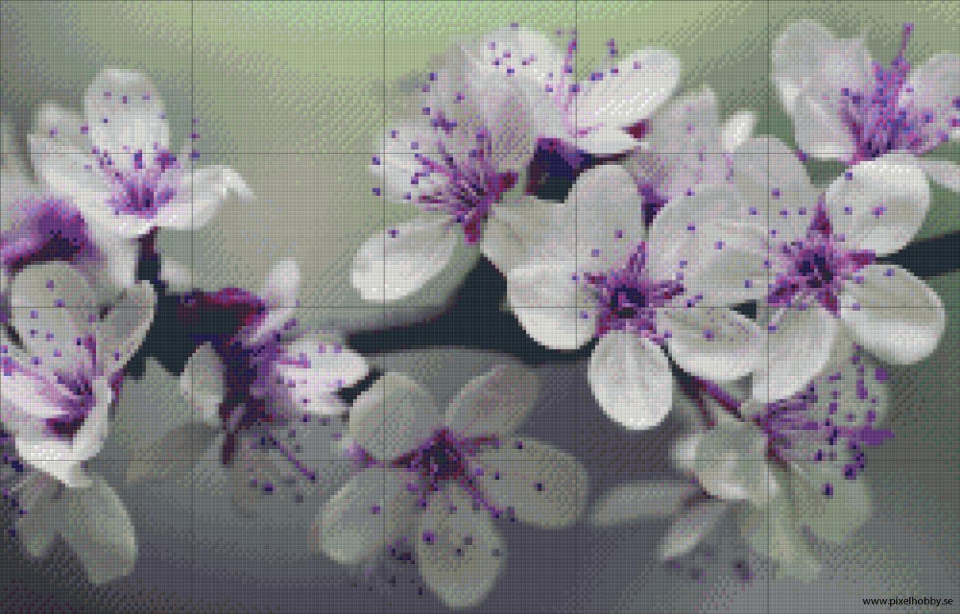 Blomster 20 rbp