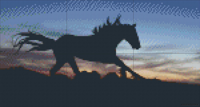 Häst 6 rbp
