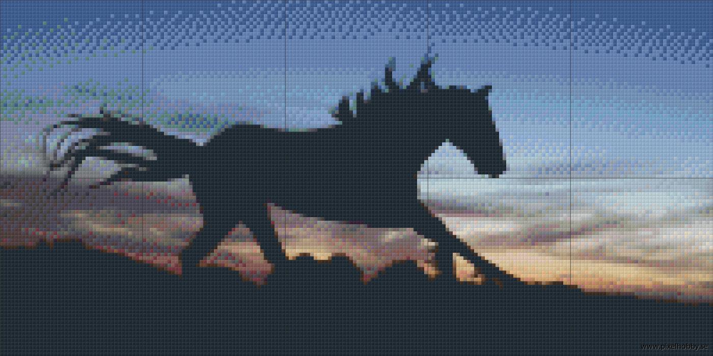 Häst 10 rbp