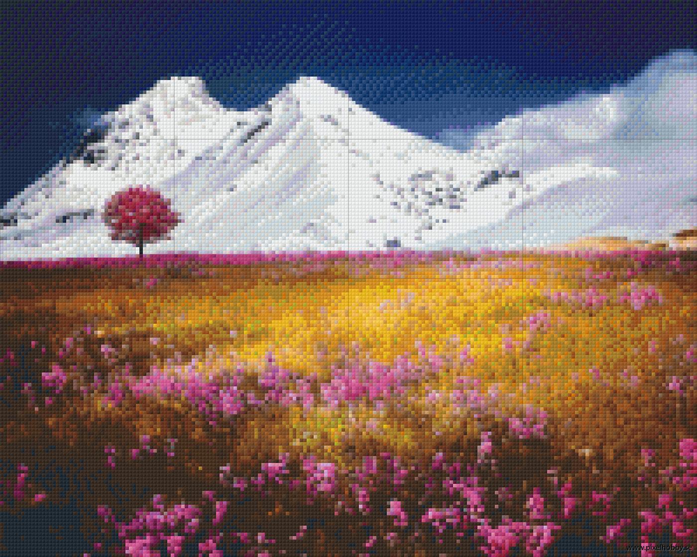 Alperna 16 rbp