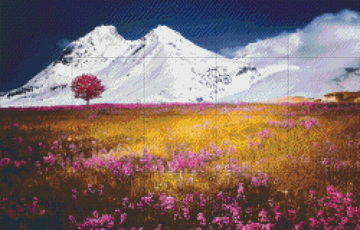 Alperna 20 rbp.phd