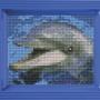 Classic motiv med ram - Delfin
