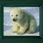 Classic motiv med ram - Isbjörn