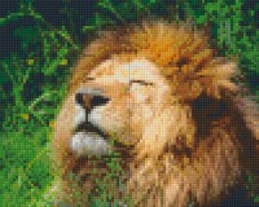 Lejon - Lejon 4 rbp