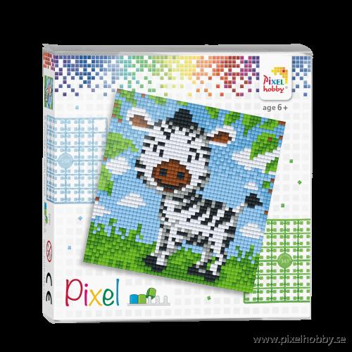 44013_Pixel-set-500x500