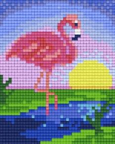 Flamingo i solnedgång - Flamingo i solnedgång
