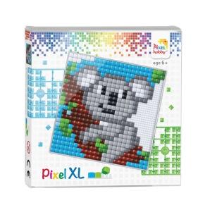 XL set, koala