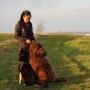 Hunddagisutbildning