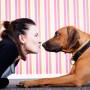Hunden – en djupdykning