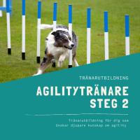 Agilitytränare Steg 2-distansutbildning