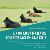 Lydnadstränare Startklass-Klass 1-distansutbildning
