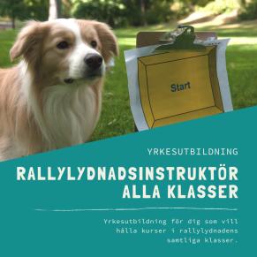Rallylydnadsinstruktör-distansutbildning - Rallylydnadsinstruktör-distansutbildning