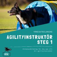 Agilityinstruktör Steg 1-distansutbildning