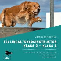 Tävlingslydnadsinstruktör Klass 2-Klass 3-distansutbildning