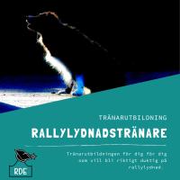Rallytränare-distansutbildning