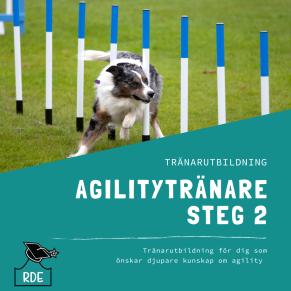 Agilitytränare Steg 2-distansutbildning - Agilitytränare Steg 2-distansutbildning