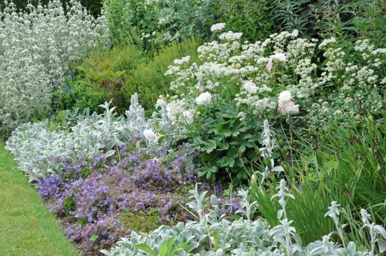 Känsla för trädgård i Varberg gör detaljerad planteringsritning & trädgårdsplanering i Varberg, Kungsbacka, Falkenberg & Halmstad.
