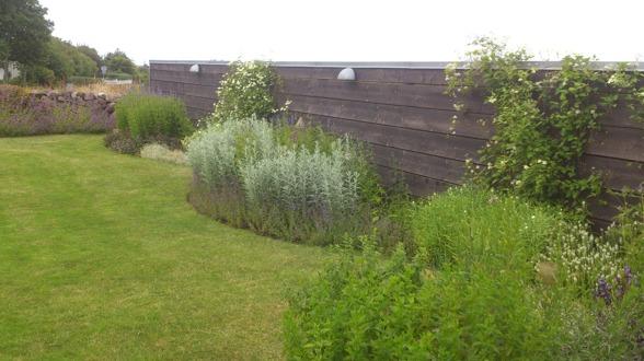 Behöver du hjälp med gräsklippning & skötsel av din gräsmatta? Kontakta Känsla för trädgård i Varberg för offert på gräsklippning & skötsel av gräsmattor
