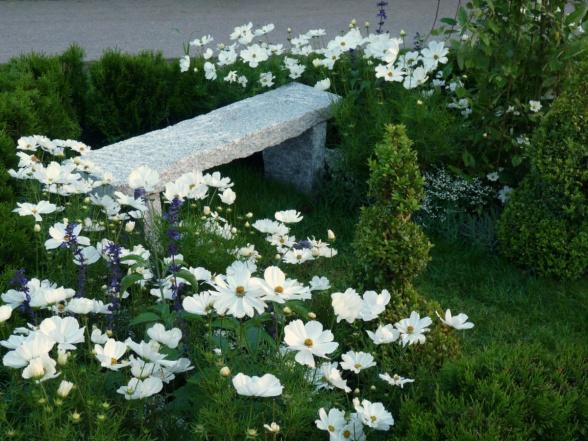 Den grovt huggna stenbänken smälter väl in med grönskan och de skira blommorna.