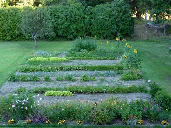 Ett trädgårdsland modell större med plats för både sommarblommor, perenner och grödor. Här samsas solrosor, rosenskära och tagetes, flox och alunrot med sallat, morötter, bönor, jordärtskockor och potatis.
