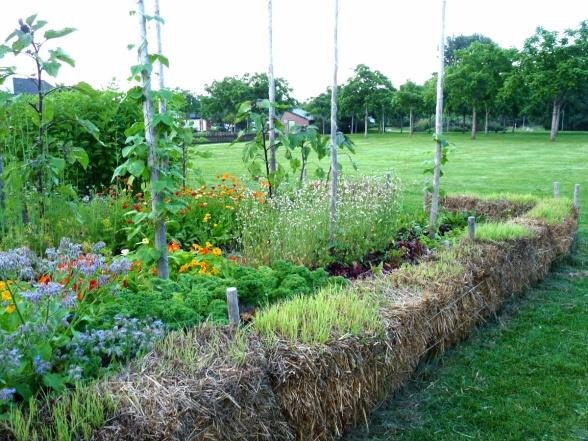 Inspiration från Enköpings idéträdgårdar med en odlingsbädd kantad av halmbalar.