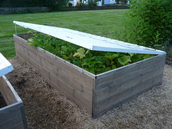 En välbyggd odlingslåda med tillhörande täckglas där odlingen kan  luftas under dagen.
