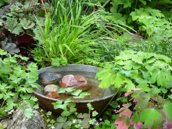 Kombinerat fågelbad och bi-vattnare omgivet av alunrot, hakonegräs, akleja och murreva.