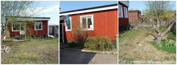 Några bilder som visar trädgården idag. I stort sett hela trädgården är i behov av att förnyas för att skapa en plats där familjen kan trivas och njuta av utelivet.