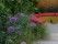 Bench-jordgubbar-vin-allium-shapeitgreen