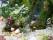 Mossa-grass-stenar-spegel-shapeitgreen