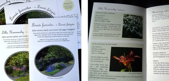 Tryckt häfte medväxtplan för Linnérabatter