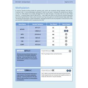 DNA Health analys inkl. 20 min genomgång