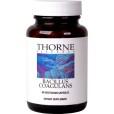 Bacillus Coagulans Thorne