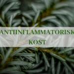Kurs Antiinflammatorisk kost 27 maj 2019