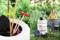 trädgårdsförvaring
