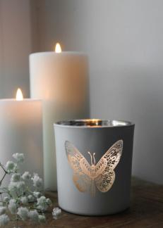 Butterfly - Vit
