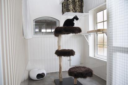 Kattpensionat Happy Katthotell är ett litet nybyggt kattpensionat med 6 rum i Bjärred väster om Lund mellan Löddeköpinge & Lomma, västra Skåne.