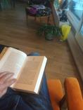 Läsning av bok