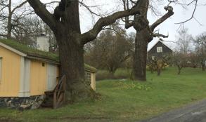 Upp till höger ses hovjägarens pensionärsbostad, som senare blev Birgittas hem